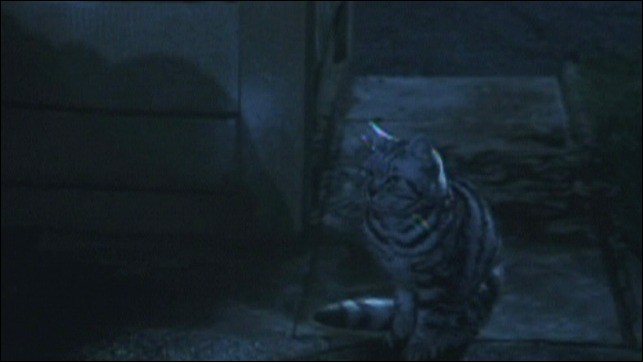 Qui est le chat dans une ruelle de Privet Drive ?