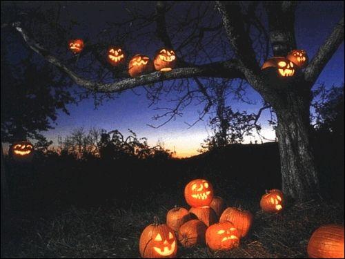 Dans les années 1920, comment se nommaient les lanternes de la fête d'Halloween ?