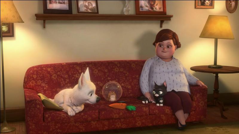 À la fin du film, sa maîtresse et la mère de sa maîtresse accueillent chez eux les ami(e)s de Volt.