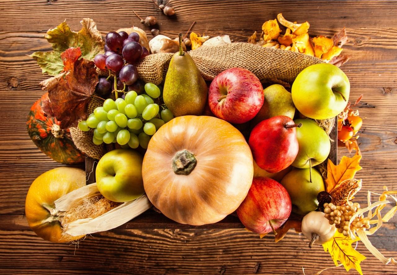 Légumes et fruits d'automne pour vous cultiver !