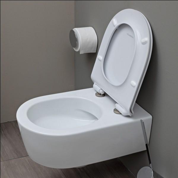 Pourquoi boit-il l'eau des toilettes ?
