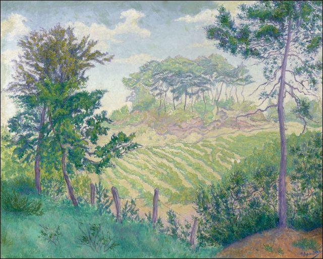 """Qui est l'auteur de la toile """"Les vignobles sous les pins"""" ?"""