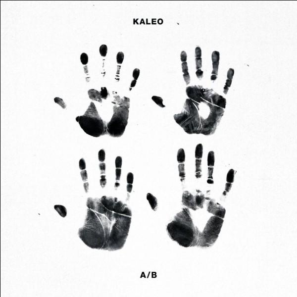 De quel pays vient le groupe Kaleo ?