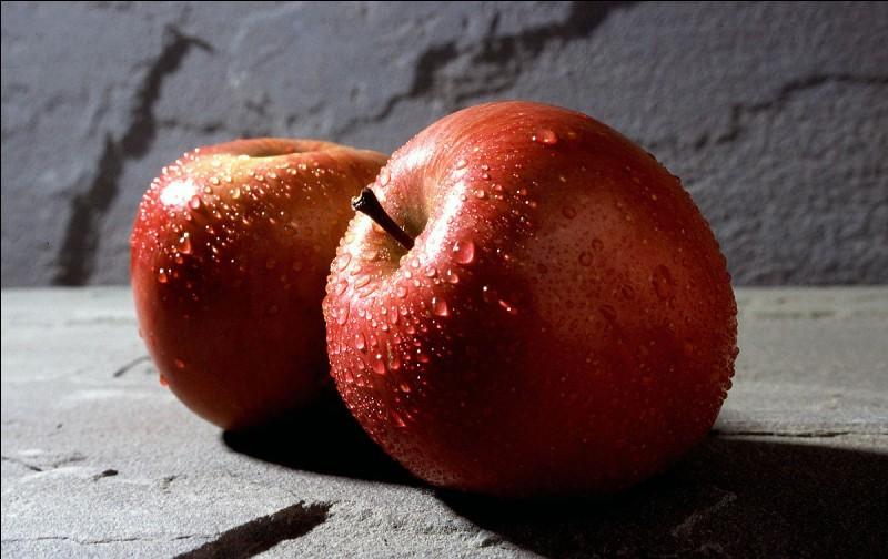 Voilà une jolie pomme rouge : une princesse un jour l'a croquée, laquelle est-ce ?