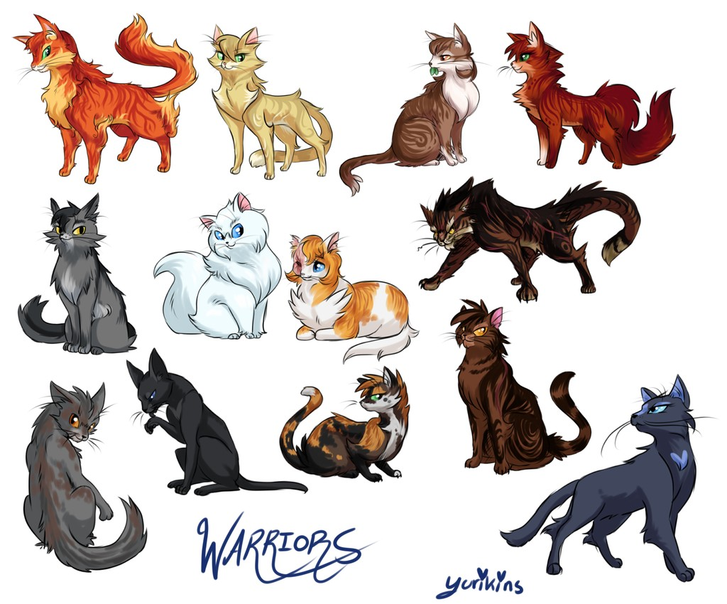 La Guerre des clans - Qui est ce chat ?