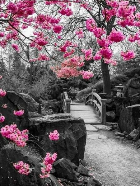 """Quel écrivain, né à Besançon, a écrit le poème """"Ô souvenirs, printemps aurore"""" ?"""