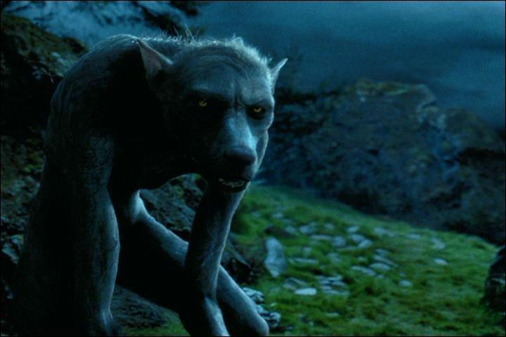 De quelle manière Hermione devine-t-elle que Lupin est un loup-garou ?