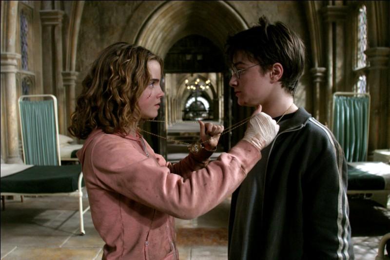 Pourquoi Hermione et Harry utilisent-ils le Retourneur de Temps ?