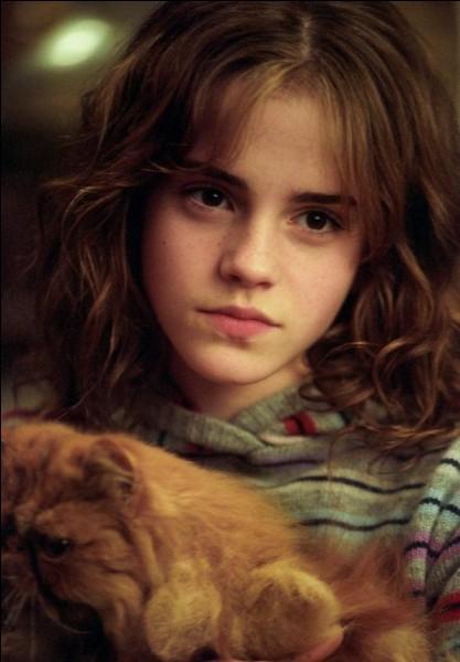 Quelle matière Hermione déteste-t-elle ?