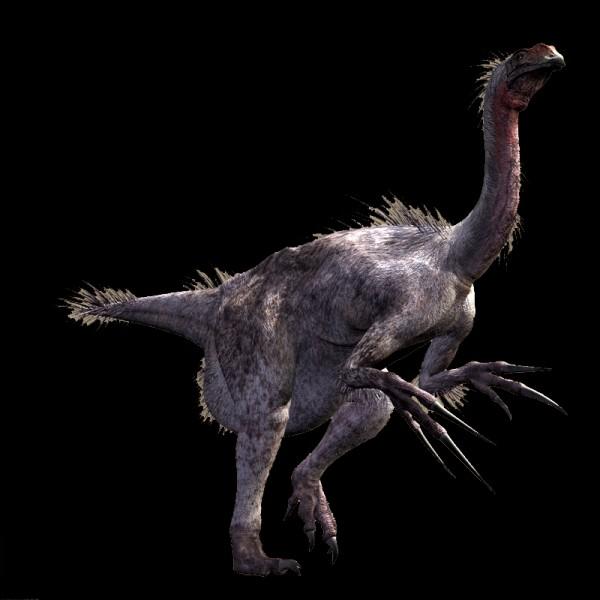 Quelle était la taille de Therizinosaurus ? (longueur)