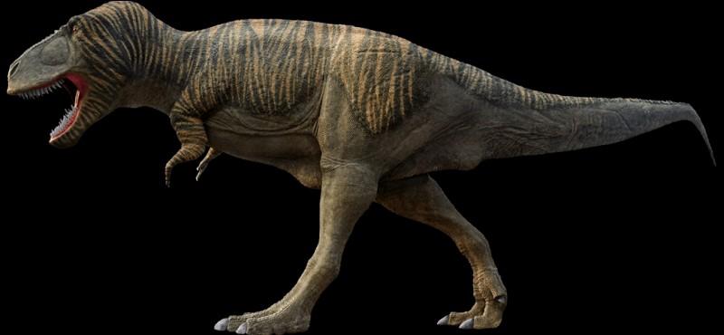 Quelle est la longueur maximum d'un crâne de Tyrannosaurus ? ( Il y a deux estimations )