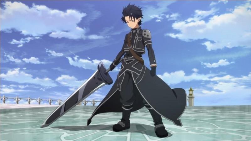 Kirito, notre héros, adore la couleur noire. C'est avec cette couleur qu'il s'est fait un nom dans le jeu SAO d'ailleurs. Mais dans ALO, de quelle race est-il ?