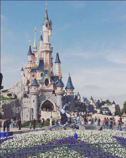 Viens-tu à Disneyland plus pour ta passion pour les films ou pour les sensations fortes ?