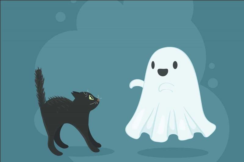 La nuit d'Halloween est principalement fêtée...