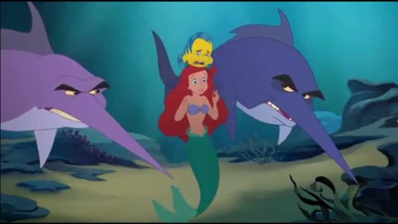 Comment s'appelle le poisson et le meilleur ami d'Ariel ?