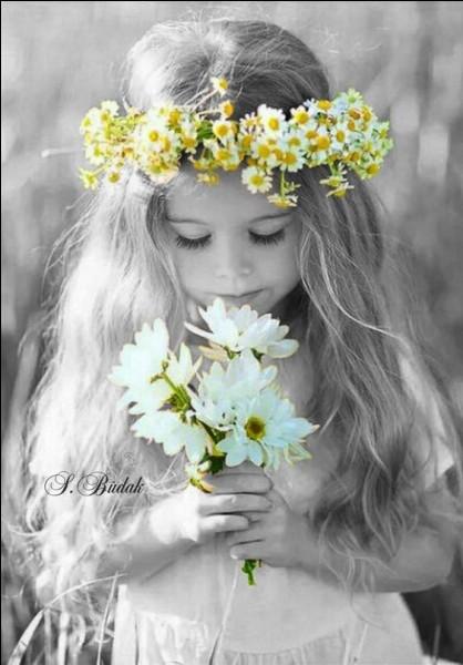 À qui appartenaient les fleurs dans un conte d'Andersen ?
