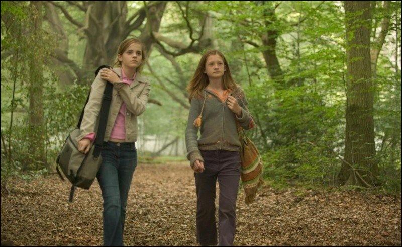 Où Hermione passe-t-elle les vacances d'été de l'année 1994 ?