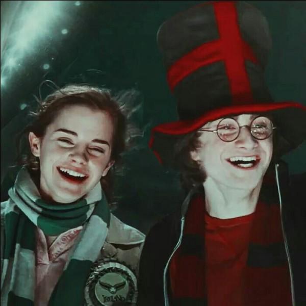 Hermione assiste à la finale de la Coupe du Monde de Quidditch. Quels sont les pays qui s'affrontent lors de ce match ?