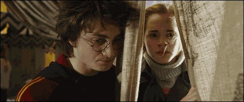 Rita Skeeter prend une photo entre Harry et Hermione juste avant la Première tâche. Que faisaient-ils à ce moment-là ?