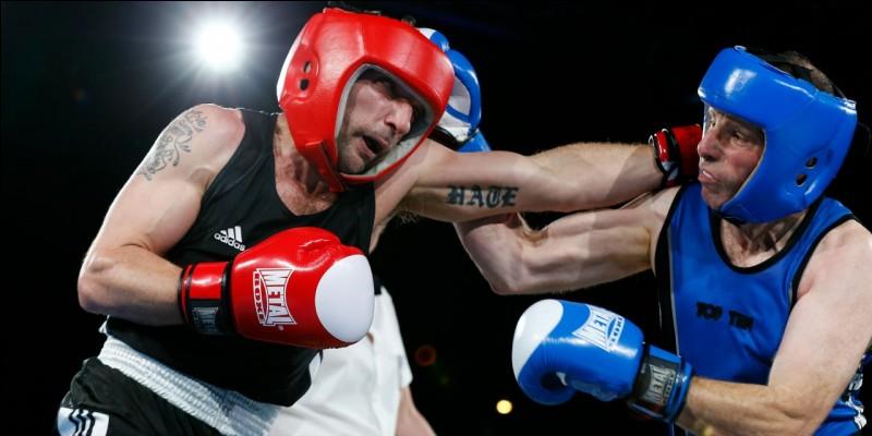 Quel est le nom du sport de combat appelé boxe française ?
