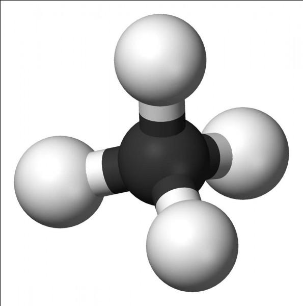 Le pétrole permet de fabriquer le gaz comme...