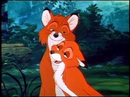 Au début des amis, ce renard possède un grand coeur ouvert et est tout de suite charmé par celle qui deviendra la mère de ses enfants.