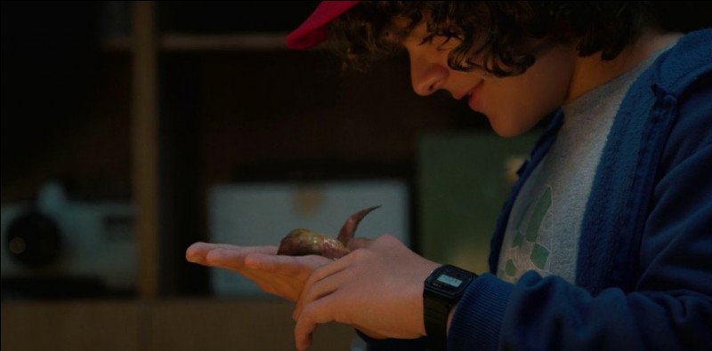 Comment s'appelle le mini-Demogorgon de Dustin ?