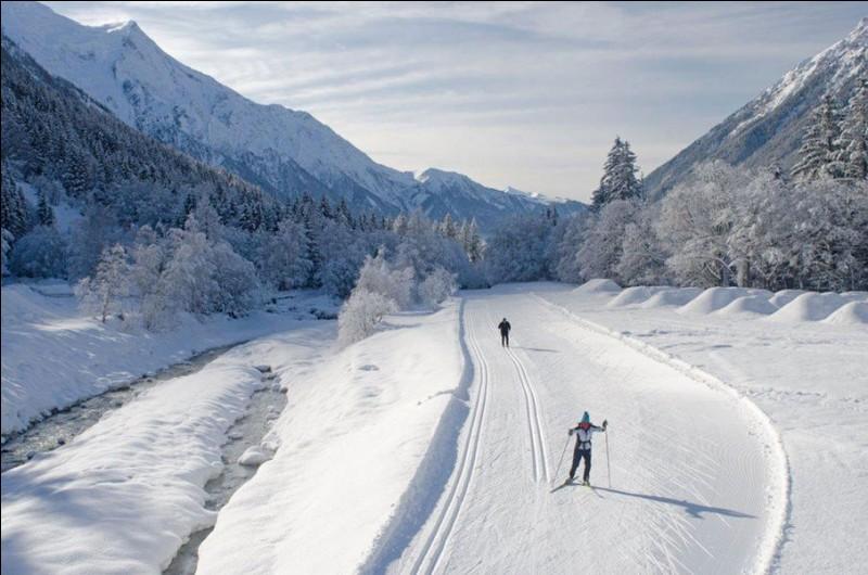 Quelle est la particularité de la ville de Chamonix ?