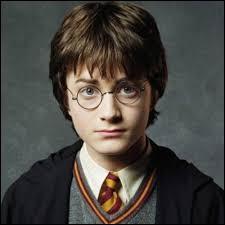 Comment s'appelle (nom de famille) la famille Moldue d'Harry Potter ?