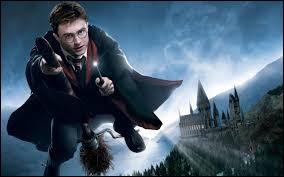Qui offre son 2e balai (l'éclair de feu) à Harry ?