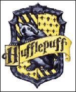 Combien de points gagne Poufsouffle lors de la coupe des quatres maisons de la première année d'études de Harry ?
