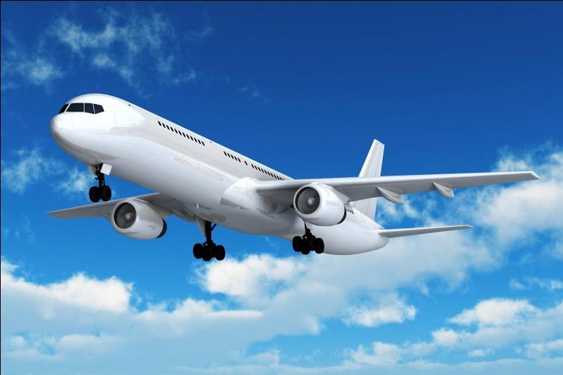 Es-tu déjà monté en avion ?