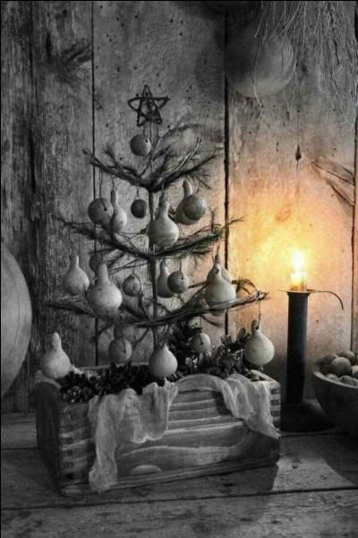 A voir ce sapin de Noël, de quelle variété peut-il être ?