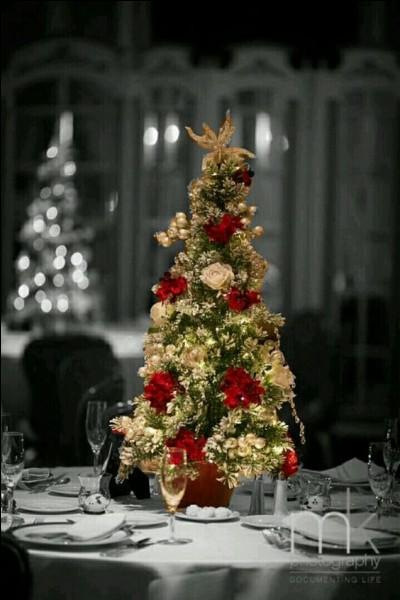 De nos jours, la dinde est de coutume le soir de Noël, mais quelle volaille mangeait-on avant la fin du 19e siècle ?
