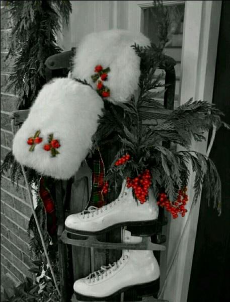 Le houx enjolive la fête, si l'on en cueille, pour décorer la maison, que prendra-t-on pour qu'il ait de jolies baies rouges ?