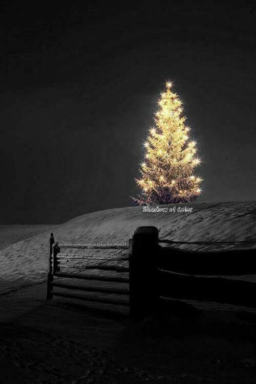 Le beau Noël ! Jour de fête !