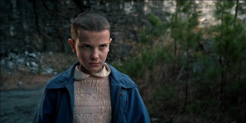 De quelle couleur est la perruque prêtée à Eleven ?