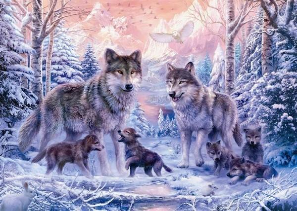 Jeu des 7 familles - les animaux