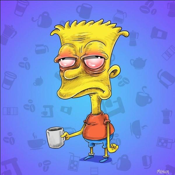 Voilà Bart après avoir passé une nuit à faire les 400 coups avec son meilleur ami (...). Lui et son complice ont préparé pas mal de pièges pour le principal Skinner.