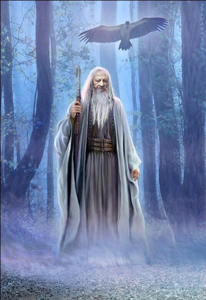 À quelle maison appartient Merlin ?