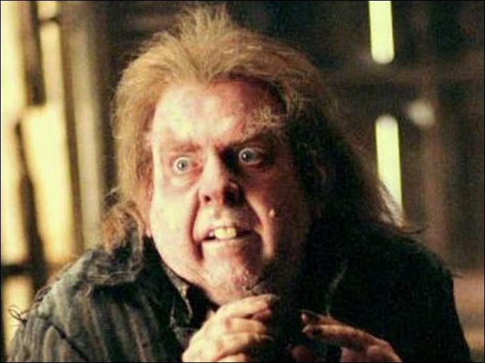 À quelle maison appartient Peter Pettigrew ?