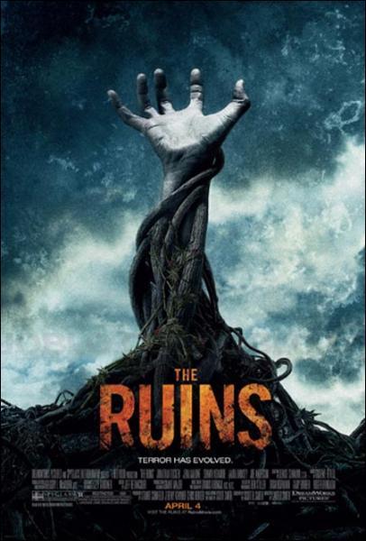 Que ne voit-on PAS dans Les Ruines?