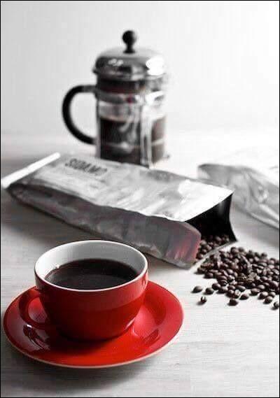 """Qui a écrit """"Ceux du grand café"""" ?"""