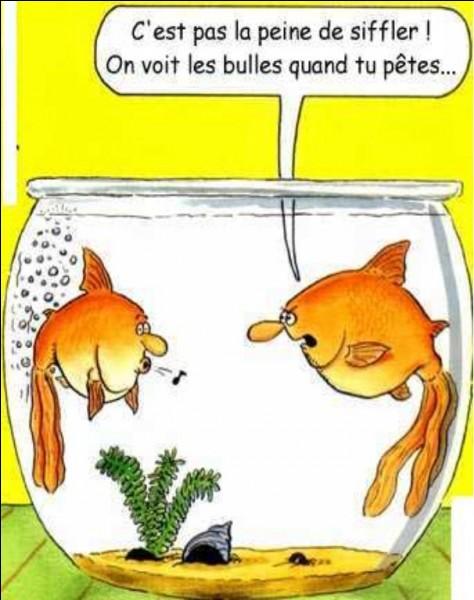 Lequel est un poisson d'eau douce ?
