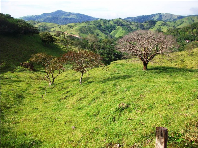 Abritant de superbes plages le long de l'océan Pacifique, une vaste forêt pluviale d'altitude et une cordillère volcanique, de quel pays le Guanacaste est-il une Province ?