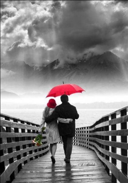 """Qui a repris le magnifique poème d'Apollinaire """"L'amour s'en va comme cette eau courante, l'amour s'en va comme la vie est lente et comme l'espérance est violente, vienne la nuit, sonne l'heure, les jours s'en vont, et je demeure"""" ?"""