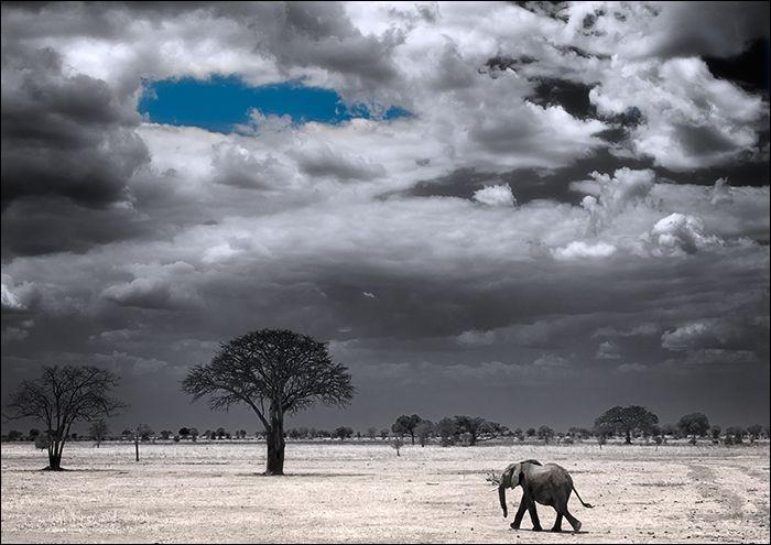 """Qui se demandait """"Où vont les eaux bleues du Tanganyika"""" ?"""
