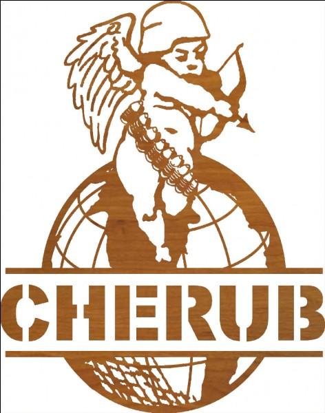 Qu'est Cherub ?