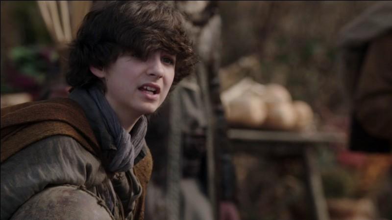 Quel acteur incarne le rôle de Baelfire ?