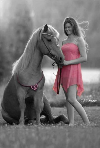 """Qui chantait """"Demandez à mon cheval"""", dans son album """"Ailleurs Land"""" ?"""